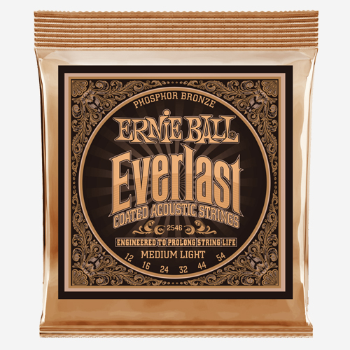 어니볼 Everlast Coated Phosphor Bronze (012)